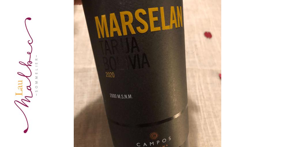 Notas de cata vinos Marselan de Campos de Solana