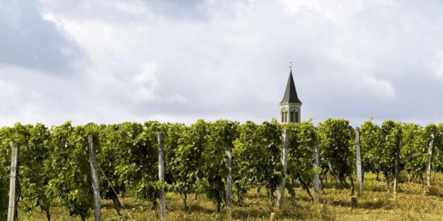 Sureoste Francia Región vitivinícola