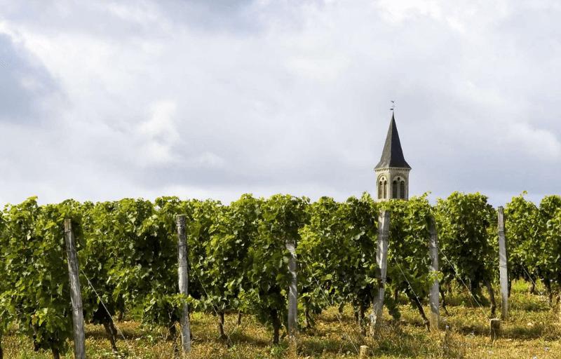 Sureoste Franci Región vitivinícola