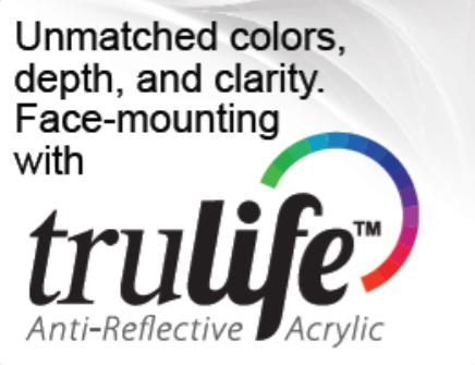 trulife_acrylic_banner