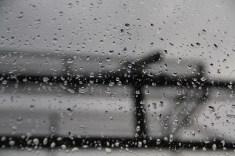 Rain (18)