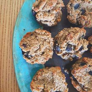 Sugar Free Gluten Free Nut Free baking