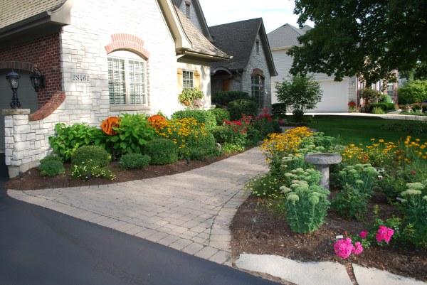 adding large plant bed