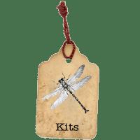 Laura Denison Designs kits-tag-button