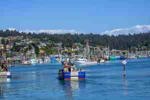 Newport, Oregon Coast Road Trip