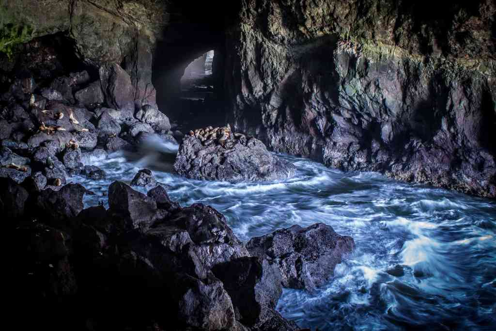 Sea Lion Caves, Oregon Coast Road Trip - www.lauraenroute.com