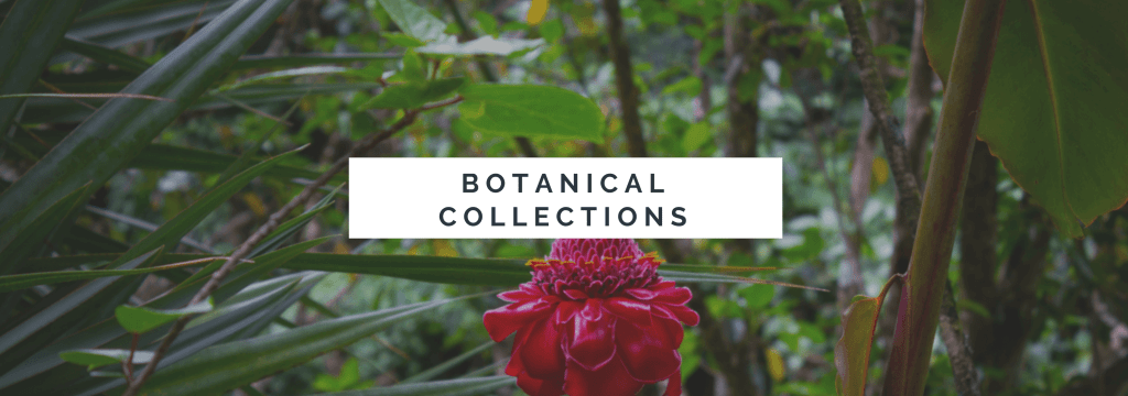 Botanical Collections - Waimea Valley Botanical Gardens - www.lauraenroute.com