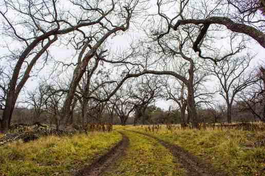 South Llano - Texas State Parks - www.lauraenroute.com