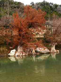 Guadalupe River State Park - Texas State Parks - wwwlauraenroute.com