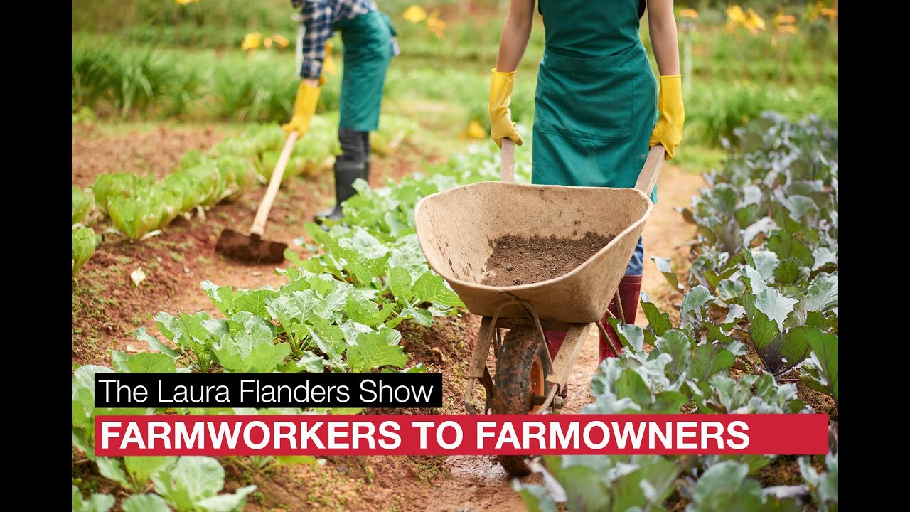 farmworkers to farm owners cover image