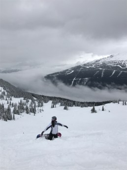 Fresh pow. Is this what heaven's like?