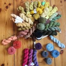 Wolle mit Pflanzen färben