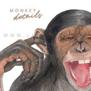 lámina infantil mono