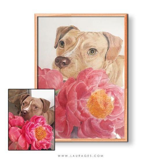 retrato de mascotas