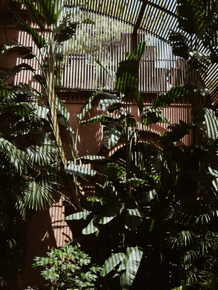Barcelona Parc de la Ciutadela Botanical Garden