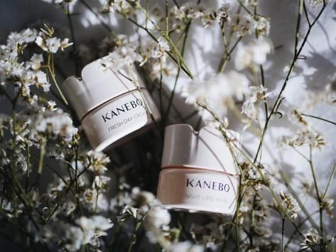 Beauty Favorites November Kanebo