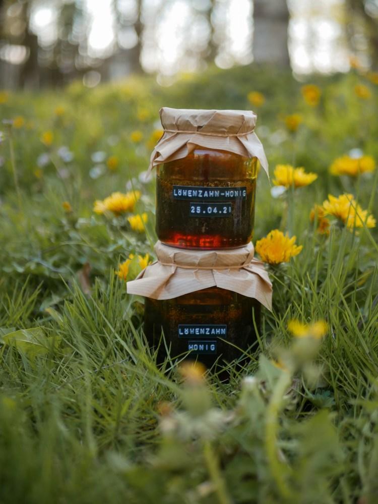 Loewenzahn Honig Rezept