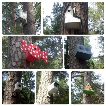 Diese Vogelhäuschen haben augenscheinlich Kinder entworfen und gebaut