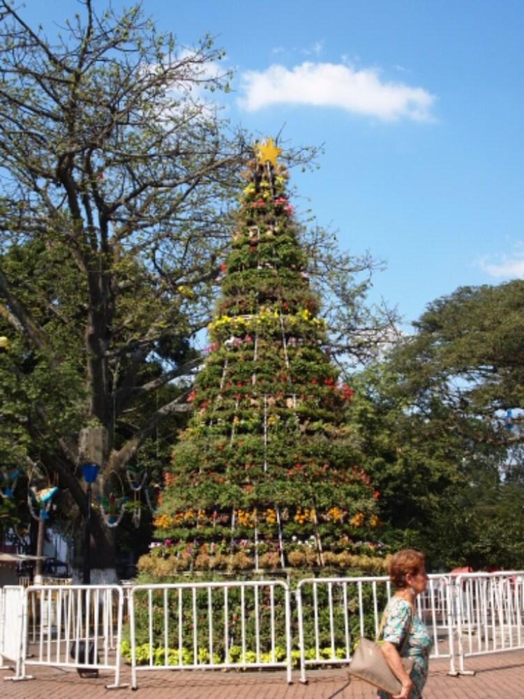Ein blumiger Weihnachtsbaum