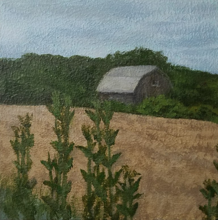 Barn in Rock Stream by Laura Jaen Smith. Acrylic landscape painting of cornfield with barn in distance near Watkins Glen from Around the Finger Lakes series.