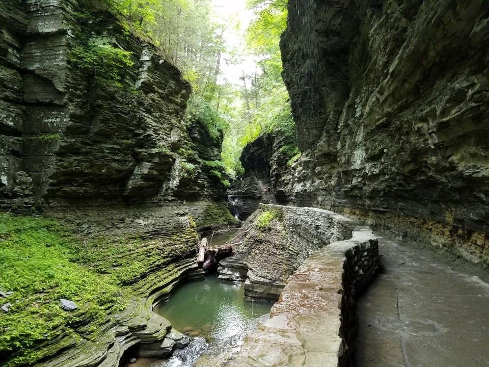 Photo of Watkins Glen State Park Gorge Trail NY by Laura Jaen Smith