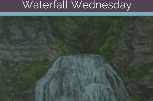Enfield Falls Waterfall Wednesday blog cover