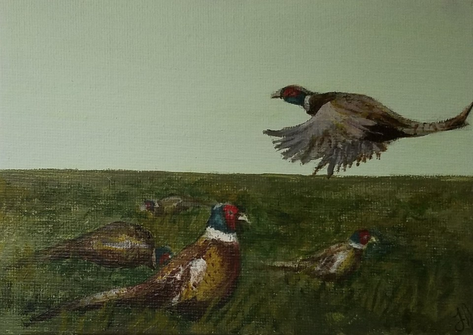Five Gold Rings by Laura Jaen Smith. Acrylic landscape painting of five pheasants.