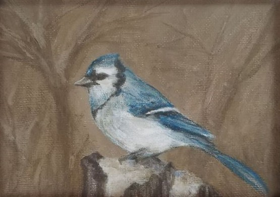 Winter is for the Birds: Bluejay by Laura Jaen Smith. Framed acrylic painting of bluejay.