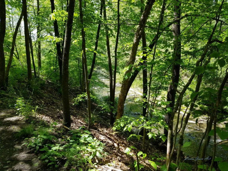 Photo of Catlin Mill Creek near Deckertown Falls in Montour Falls NY by Laura Jaen Smith