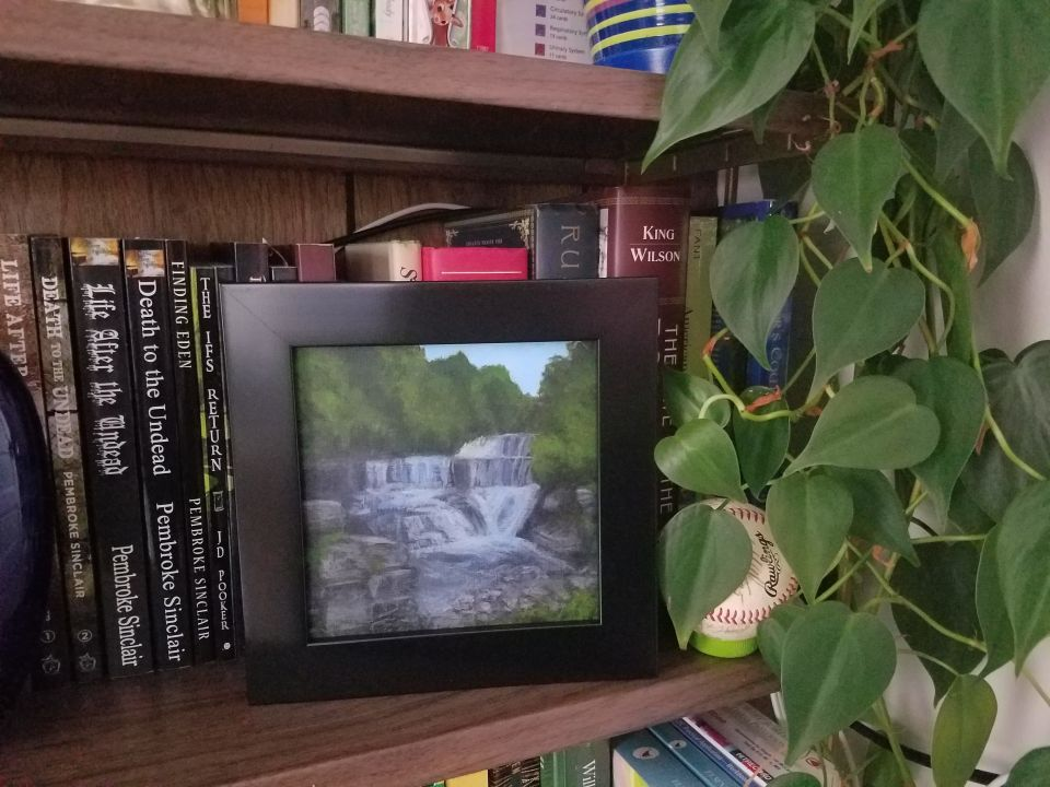 Seneca Mill Falls by Laura Jaen Smith. Framed waterfall painting from Keuka Outlet Trail on bookshelf.