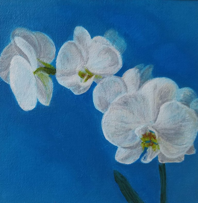 Orchid with Blue by Laura Jaen Smith. Square acrylic painting of white orchids against sky blue background.