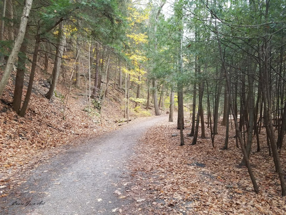 Photo of Gorge Trail at Taughannock Falls State Park by Laura Jaen Smith
