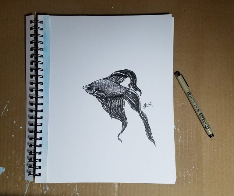 Sketchbook view with pen of Betta by Laura Jaen Smith. Black and white ink drawing of betta fish swimming with flowy fins.