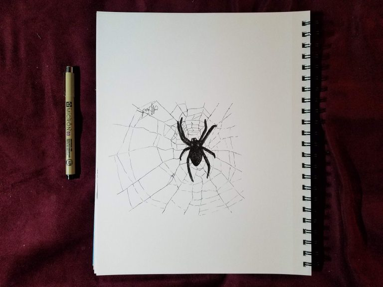 Spider by Laura Jaen Smith. Black and white ink drawing of spider in web.
