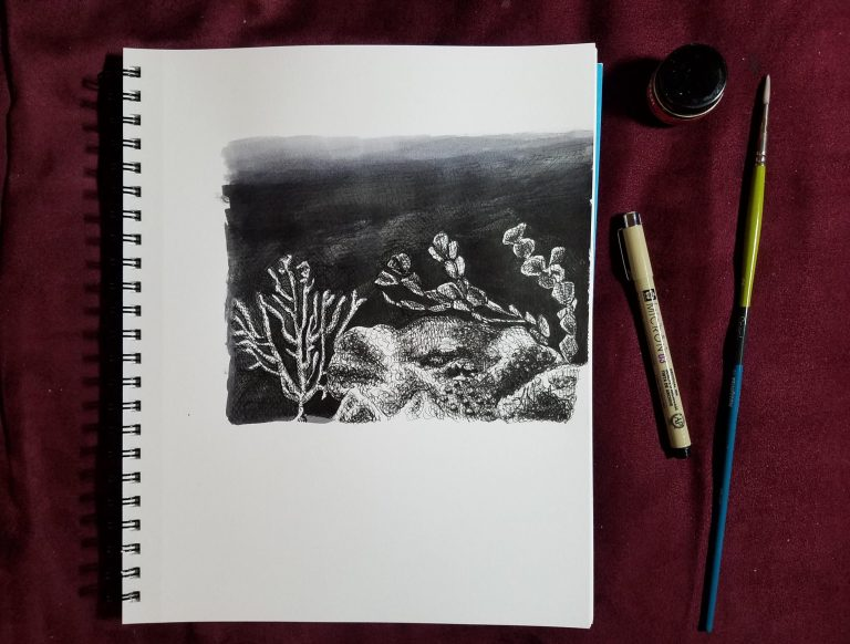 Sketchbook view with pen, brush, and fluid ink of Ocean Floor by Laura Jaen Smith. Black and white ink drawing of deep ocean with coral and sea plants.