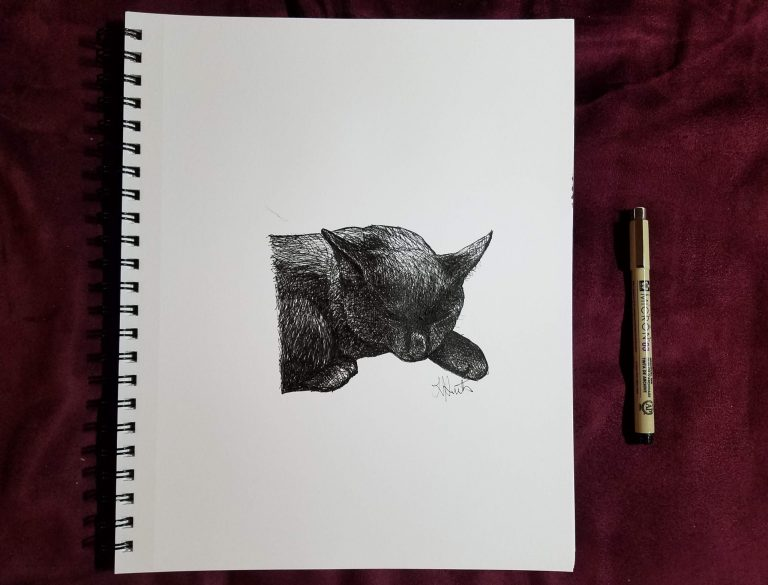 Sketchbook view and pen of Black Kitten by Laura Jaen Smith. Black and white ink drawing of cat sleeping.