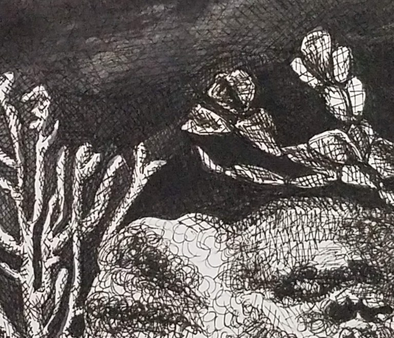 Ocean Floor by Laura Jaen Smith. Black and white ink drawing of deep sea floor with coral and ocean plants