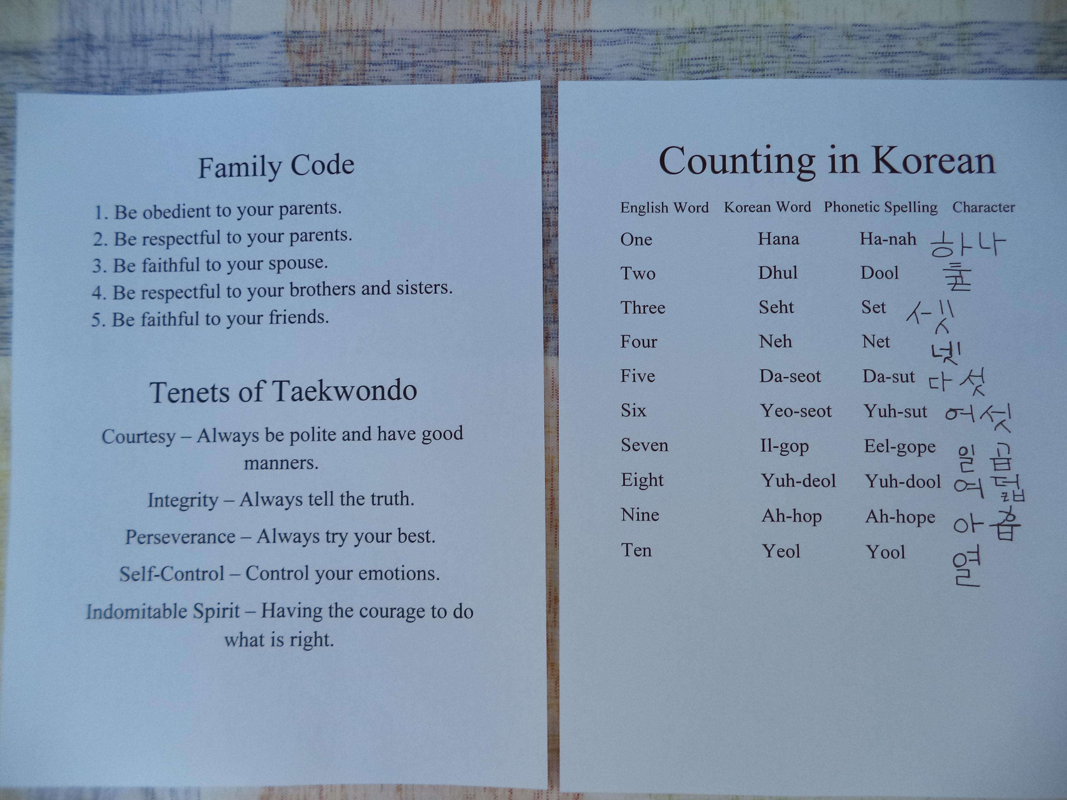 Taekwondo Activity Book  Laurakmarshalls Blog