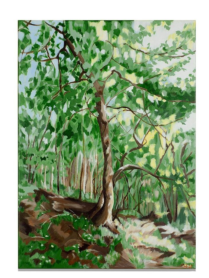 Villers Abbey Forest, acrylic on canvas, 50 x 70 cm, 2020, available on webshop