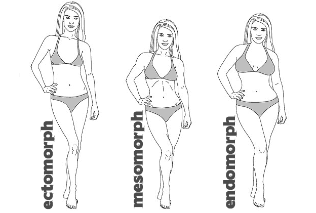 What Body Type Are You? Ectomorph, Mesomorph & Endomorph