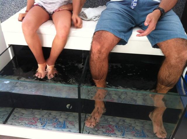 Carp Fish Spa