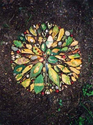 leaves Tim Pugh