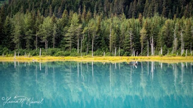 Alaska2019-190.jpg