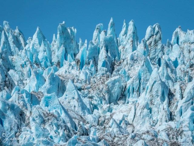 Alaska2019-45.jpg