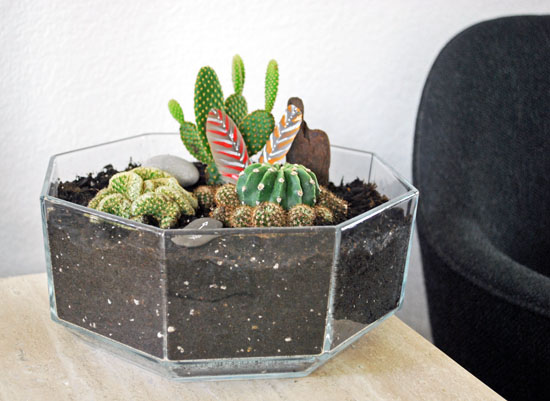 2tribal cactus mini garden2