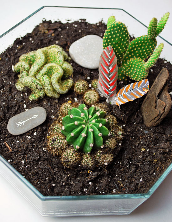 7tribal cactus mini garden