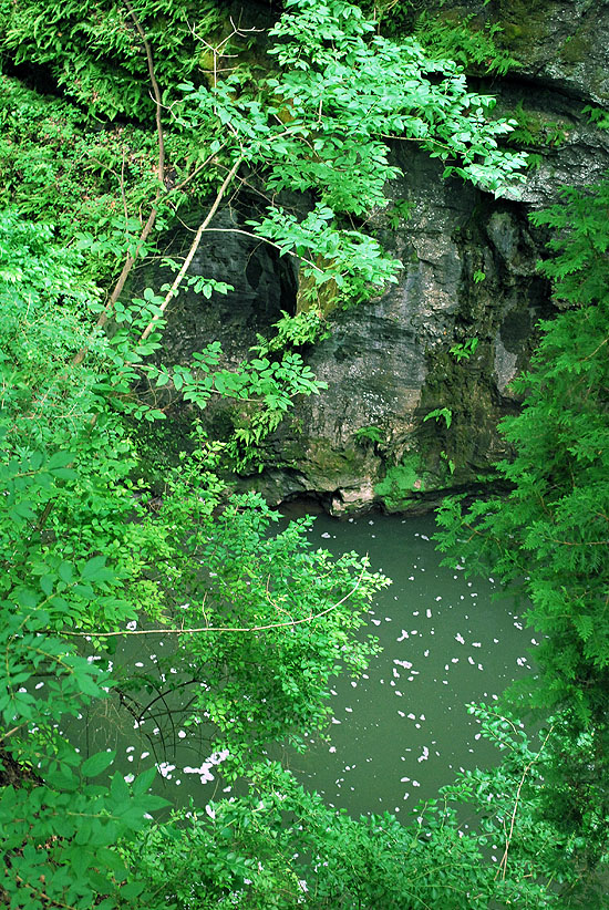 9clifton gorge hike a