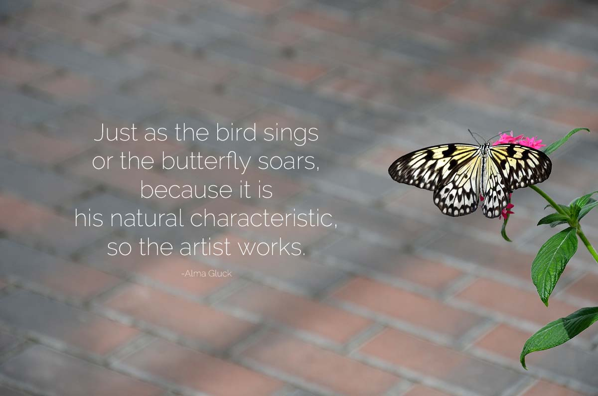 44butterfly house june 2106quote