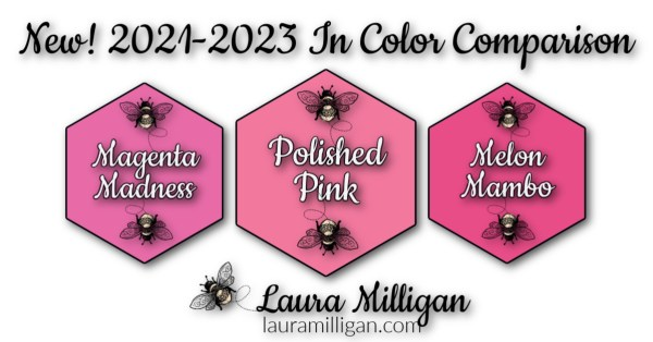 New Stampin' Up! In Color Comparison 2021 - 2023 Laura Milligan Polished Pink