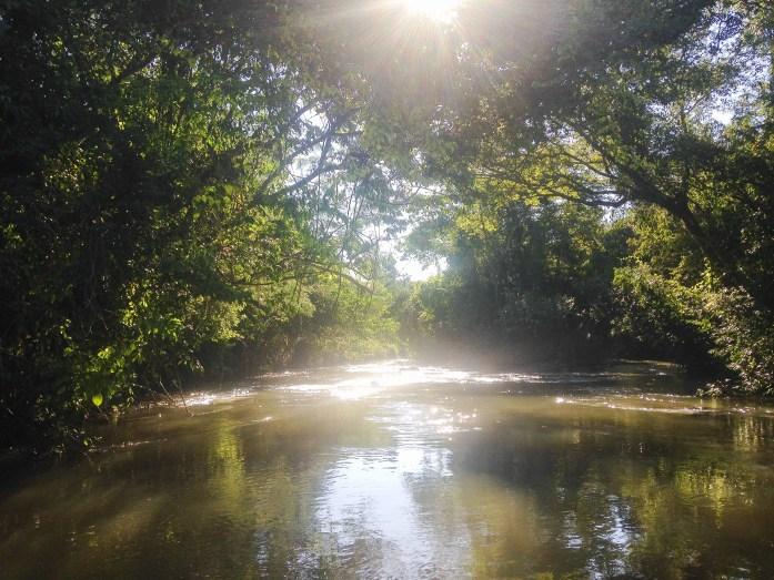 Navegando el Rio Parana